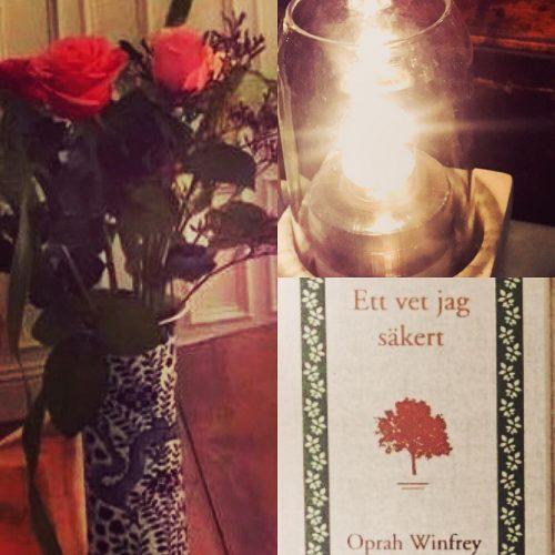 Härlig kvällsläsning. ❤️boken, läs den gärna!