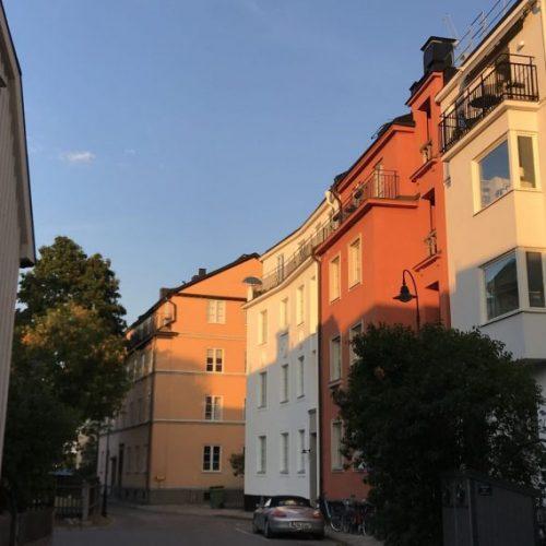 VivBon Djurgården