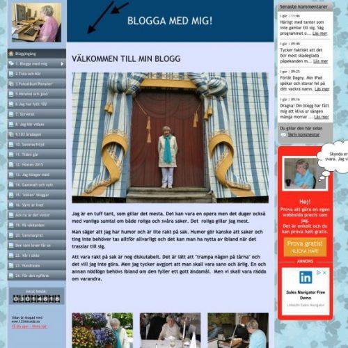 VivBon Dagny Bojan blogg