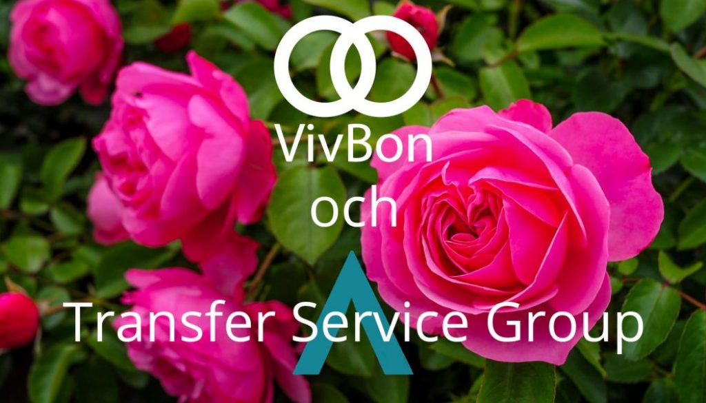 VivBon och Transfer Service Group